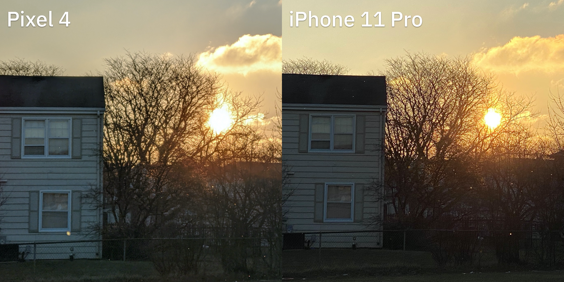 Dynamic Range, Telephoto, and the iPhone 11 Pro & Pixel 4