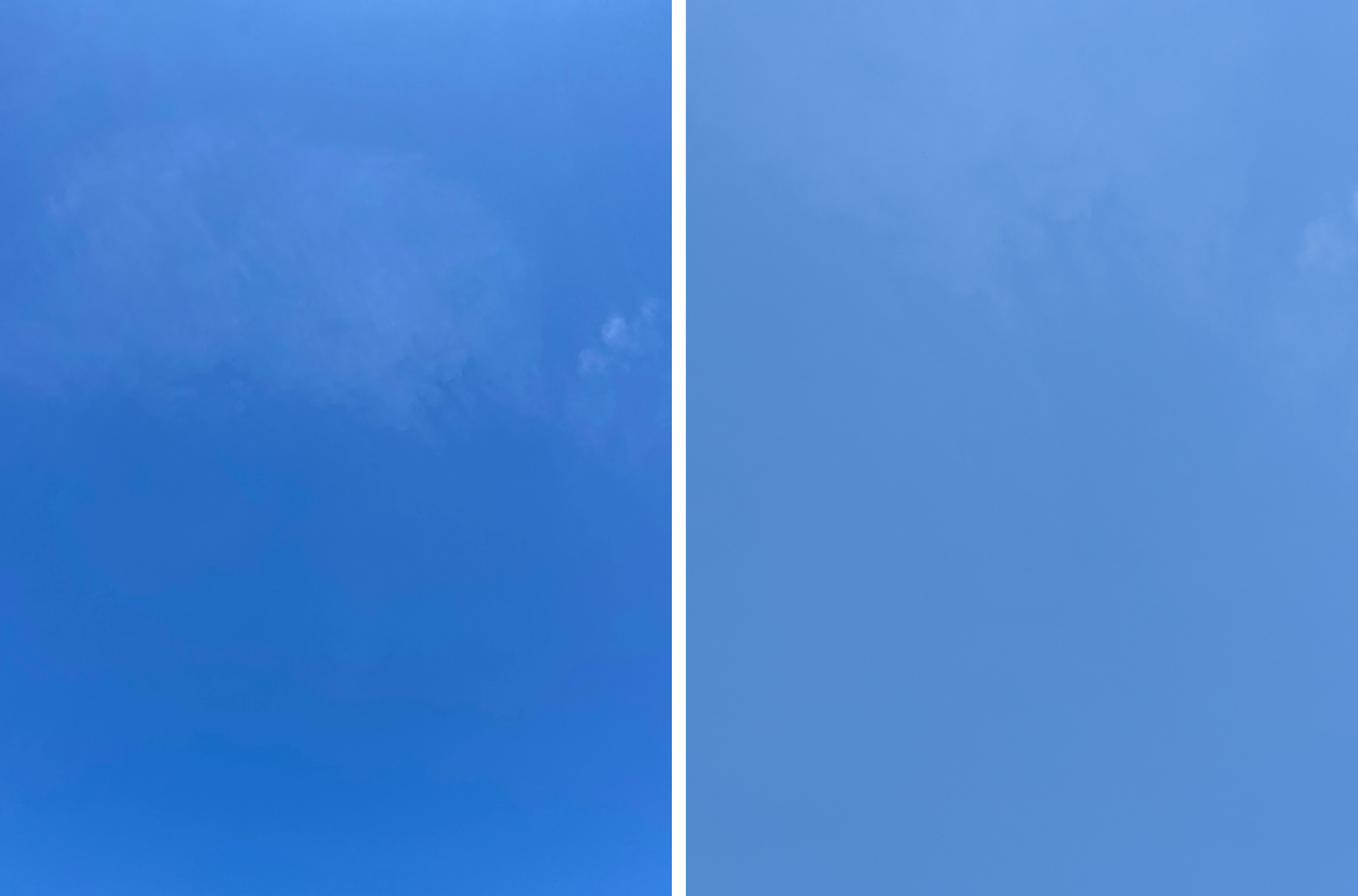 iPhone 11 Pro and Pixel 4 Cameras: Color temp, Color Quality, and Consistency Across Lenses