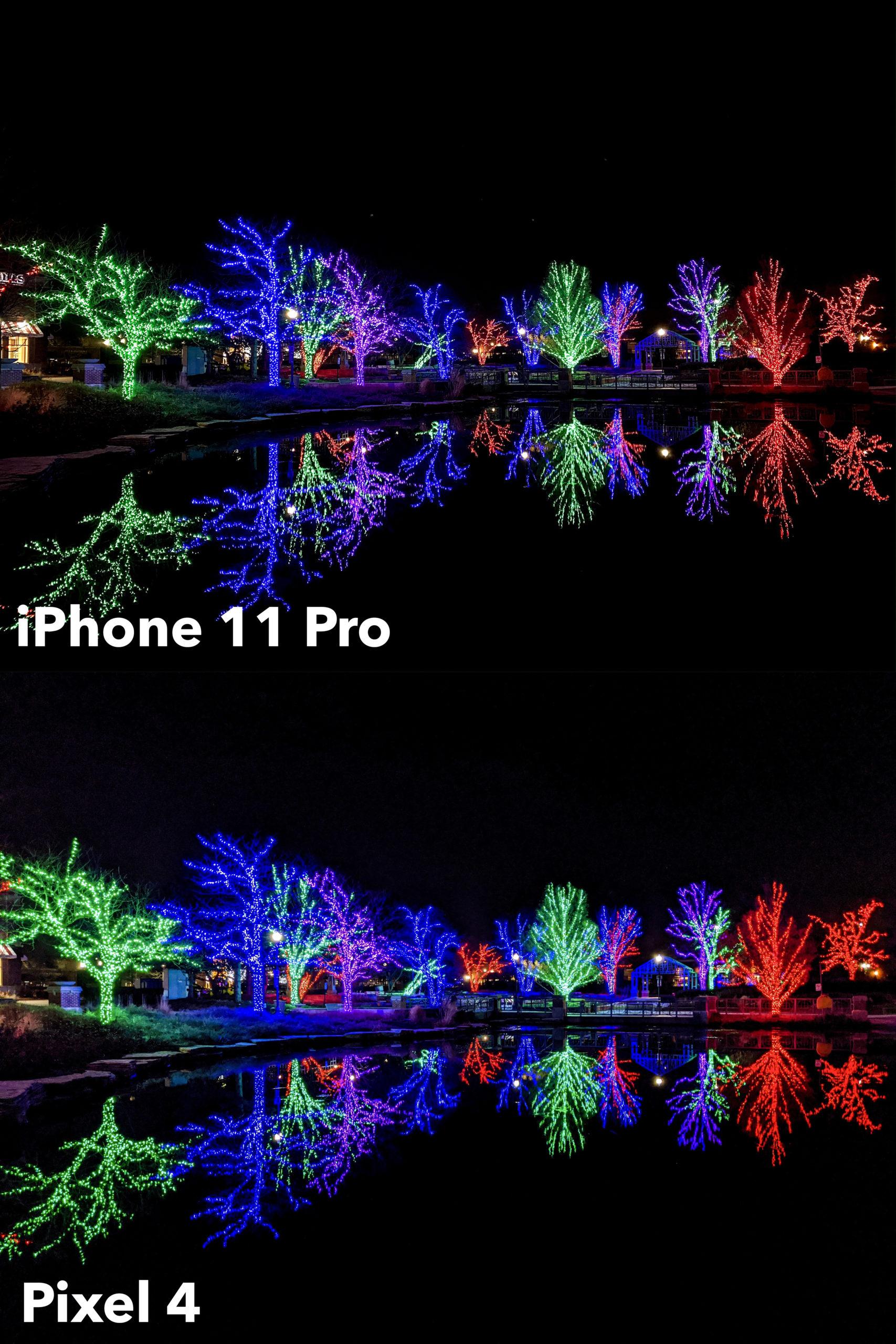 Camera Birchtree